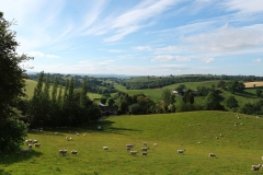 Seven Acre Walk Views